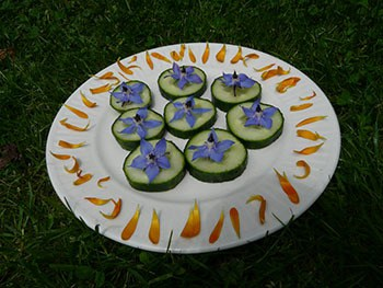 komkommer met bernage en calendulaversiering
